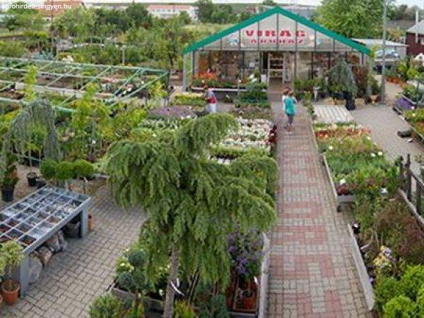 keresek férfiak kertészeti